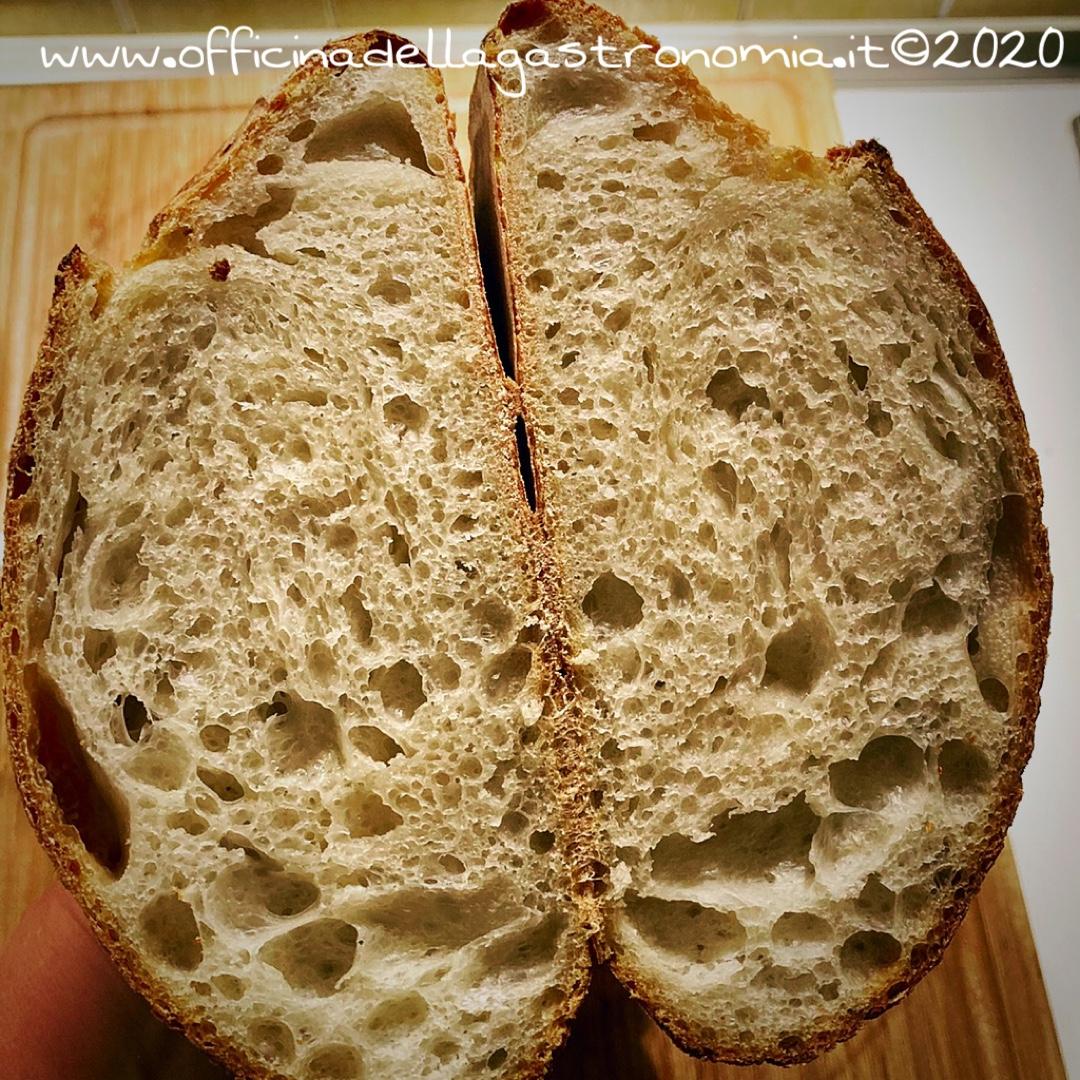Pane a lievitazione naturale (con autolisi)